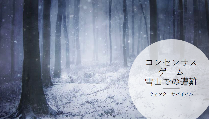 コンセンサスゲーム 雪山